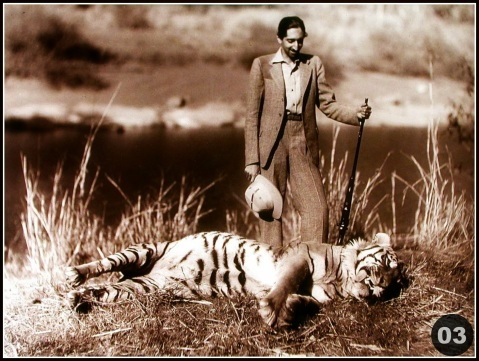 Milind Dombale (Deshmukh) - The Great Holkars - MD2002003 - Maharaja Yashwantrao Holkar II With Hunted Tiger