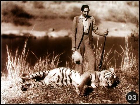 Milind Dombale (Deshmukh) - The Great Holkars - MD2002003 - Maharaja Yashwantrao Holkar II With Hunted Tiger